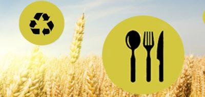 Plan de Defensa de los alimentos: qué es y por qué lo necesita tu empresa