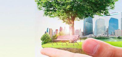 Caso de éxito ISO 50001: cómo hemos conseguido ahorro energético